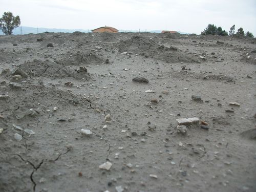 Macalube di Contrada Terrapelata in provincia di Caltanissetta (6)